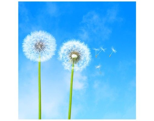 Beistelltisch - Flying Seeds