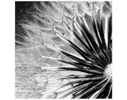 Beistelltisch - Pusteblume Schwarz & Weiß