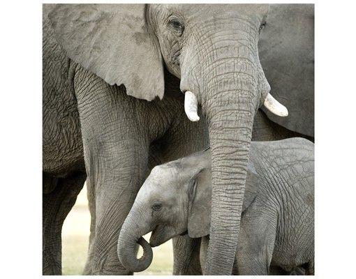 Beistelltisch - Elefantenliebe