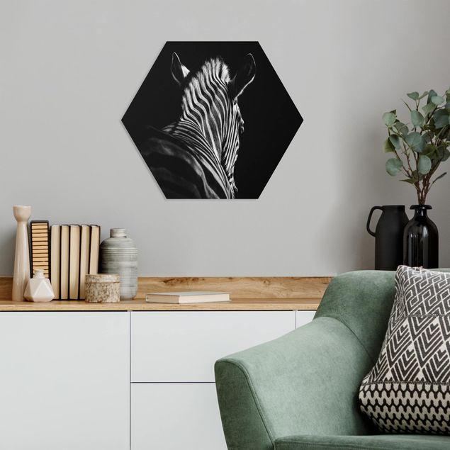 Hexagon Bild Forex - Dunkle Zebra Silhouette