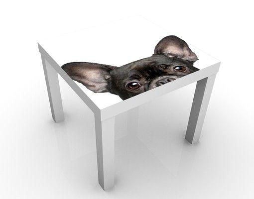 Beistelltisch - Katzen mit Hundeblick