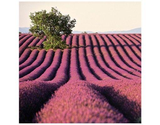 Beistelltisch - Lavender