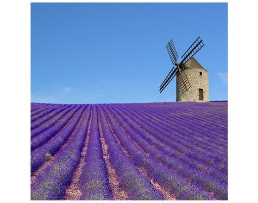 Beistelltisch - Lavendelduft in der Provence