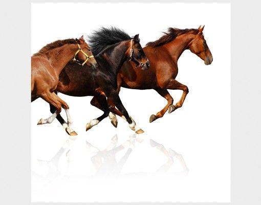 Beistelltisch - Pferdeherde