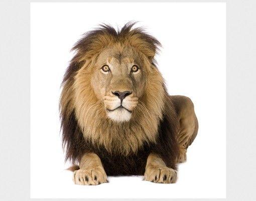 Beistelltisch - König Löwe II