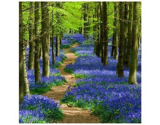 Beistelltisch - Wanderweg in Hertfordshire