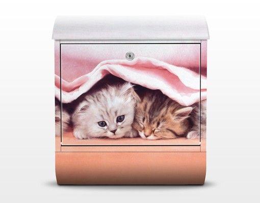 Briefkasten mit Zeitungsfach - Sugar Sweet - Briefkasten mit Tiermotiv