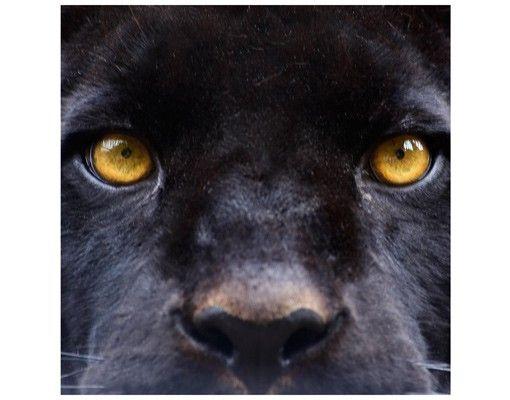 Beistelltisch - Power of Puma