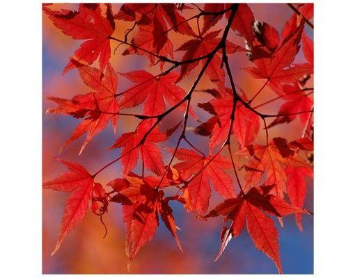 Beistelltisch - Red Maple
