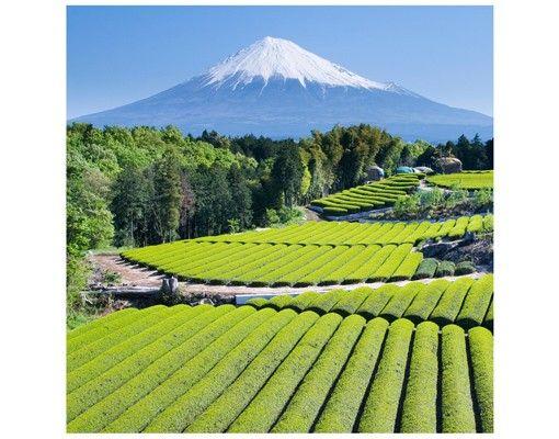Beistelltisch - Teefelder vor dem Fuji