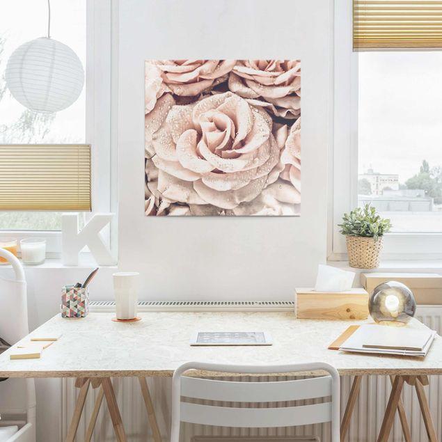 Glasbild - Rosen Sepia mit Wassertropfen - Quadrat 1:1