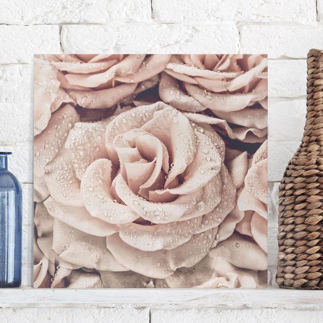 Leinwandbild - Rosen Sepia mit Wassertropfen - Quadrat 1:1