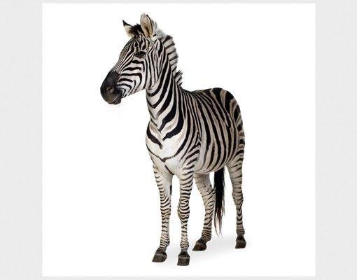 Beistelltisch - Lächelndes Zebra