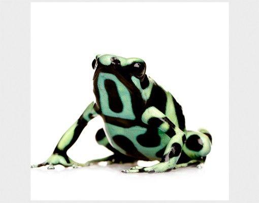 Beistelltisch - Zebra Frog