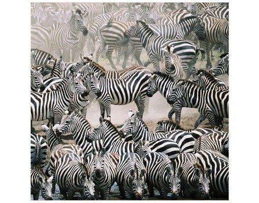 Beistelltisch - Zebraherde