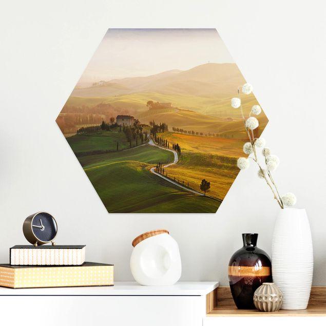 Hexagon Bild Alu-Dibond - Val d'Orcia