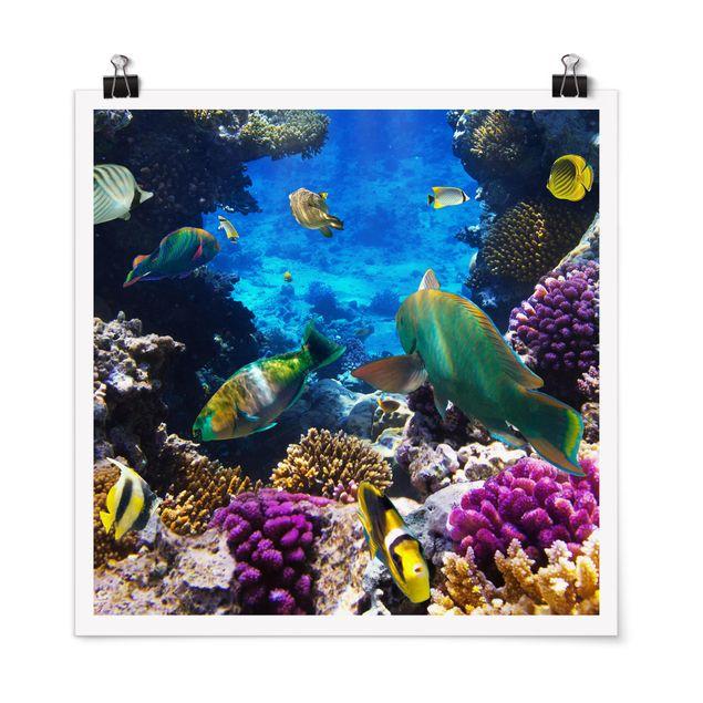 Poster - Underwater Dreams - Quadrat 1:1
