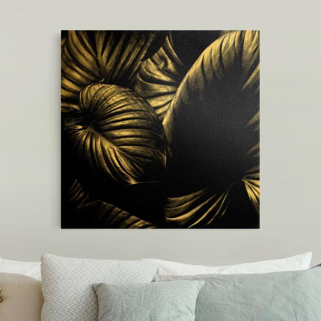 Leinwandbild Gold - Schwarz Weiß Botanik Hosta - Quadrat 1:1