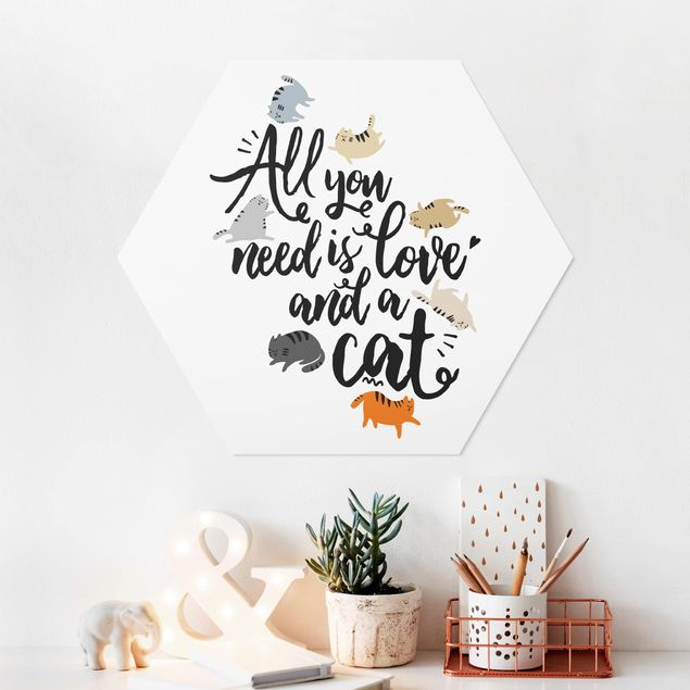 Hexagon Bild Forex - All you need is love and a cat