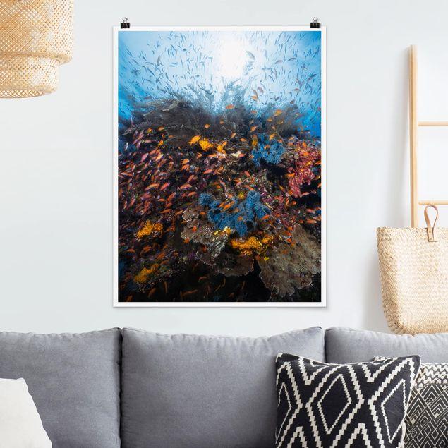 Poster - Lagune mit Fischen - Hochformat 3:4