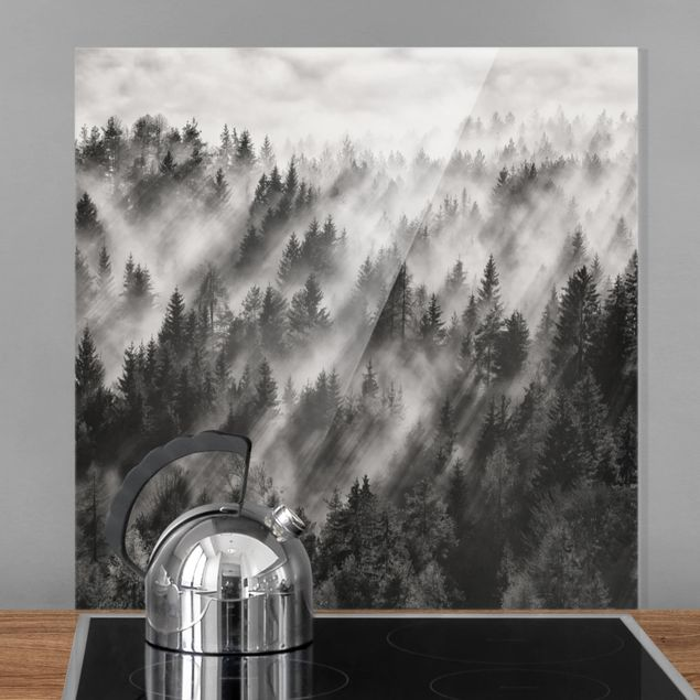 Glas Spritzschutz - Lichtstrahlen im Nadelwald - Quadrat - 1:1