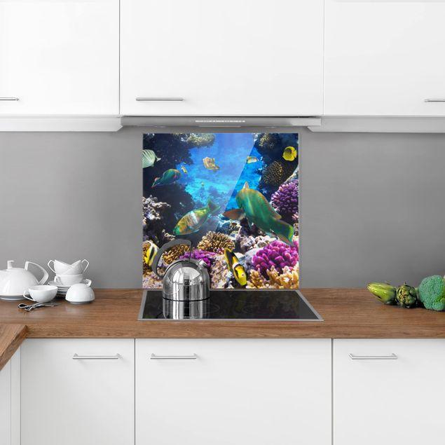 Glas Spritzschutz - Underwater Dreams - Quadrat - 1:1
