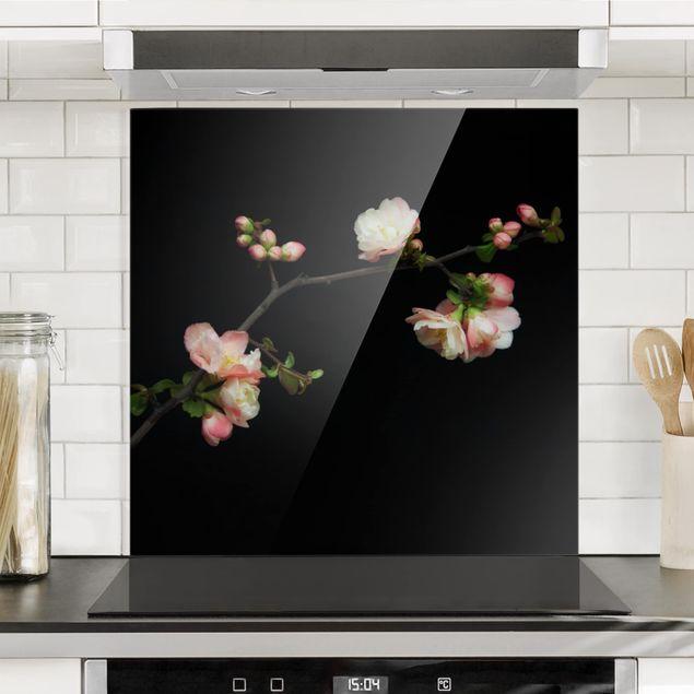 Glas Spritzschutz - Blütenzweig Apfelbaum - Quadrat - 1:1