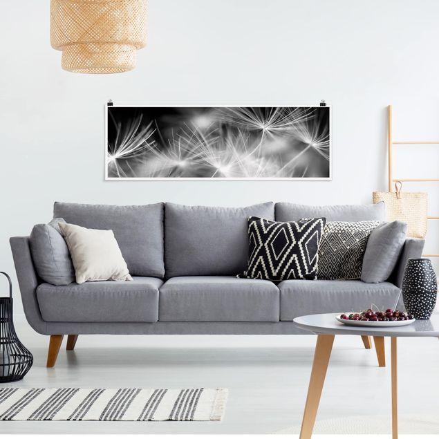 Poster - Bewegte Pusteblumen Nahaufnahme auf schwarzem Hintergrund - Panorama Querformat