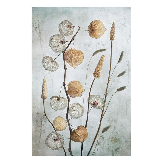 Forex Fine Art Print - Lampionfrüchte im Herbst - Hochformat 3:2
