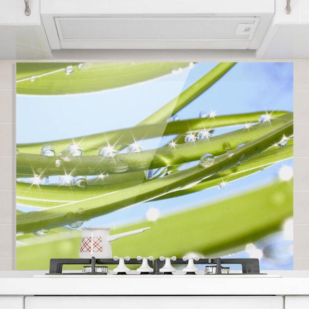 Glas Spritzschutz - Fresh Green - Querformat - 4:3