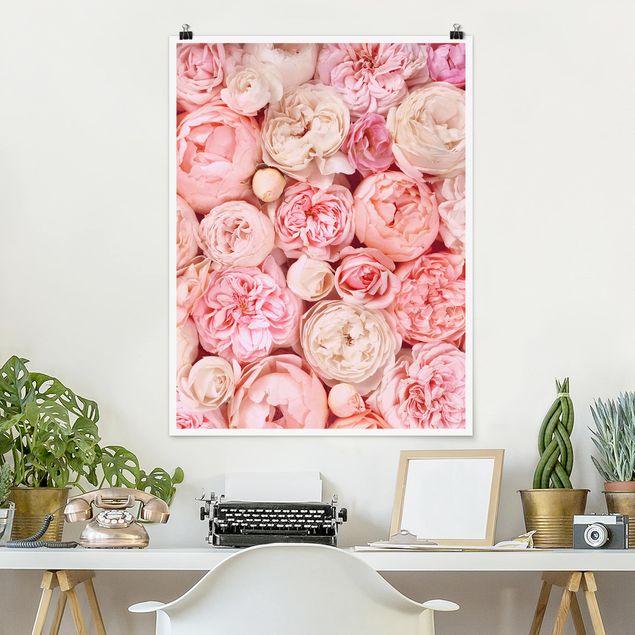 Poster - Rosen Rosé Koralle Shabby - Hochformat 4:3