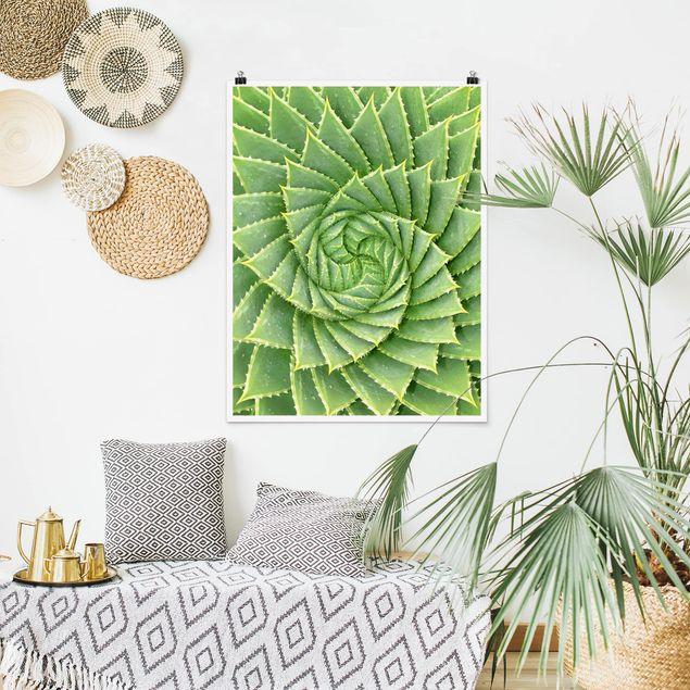 Poster - Spiral Aloe - Hochformat 3:4