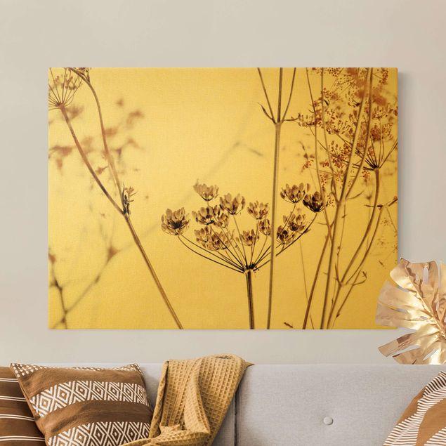 Leinwandbild Gold - Trockenblume im Lichtspiel - Querformat 4:3