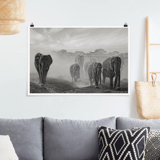 Poster - Elefantenherde - Querformat 2:3