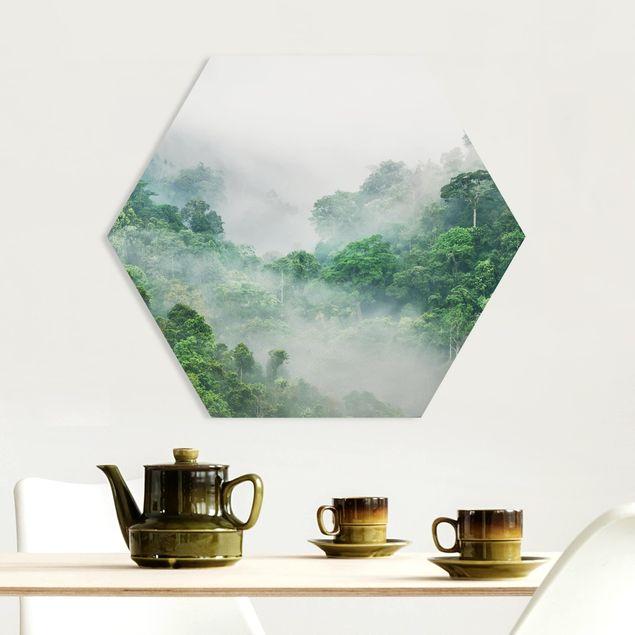 Hexagon Bild Forex - Dschungel im Nebel