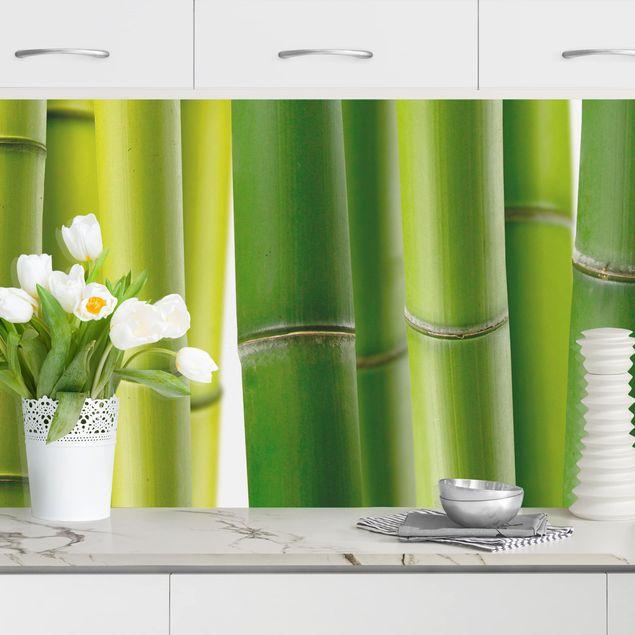 Küchenrückwand - Bambuspflanzen