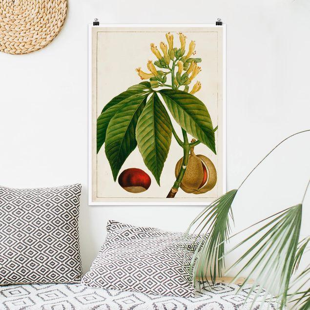 Poster - Tableau Blatt Blüte Frucht VI - Hochformat 3:4