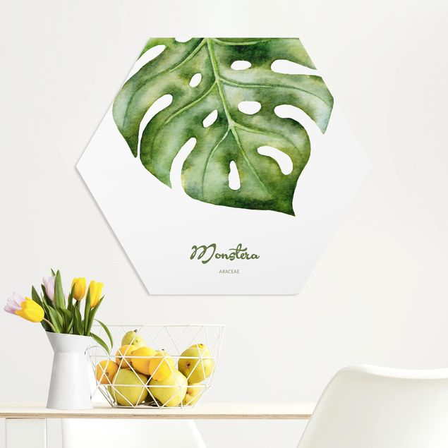 Hexagon Bild Forex - Aquarell Botanik Monstera