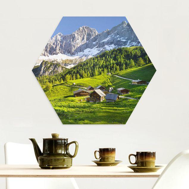 Hexagon Bild Alu-Dibond - Steiermark Almwiese