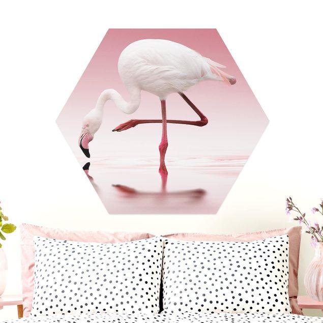 Hexagon Bild Alu-Dibond - Flamingo Dance