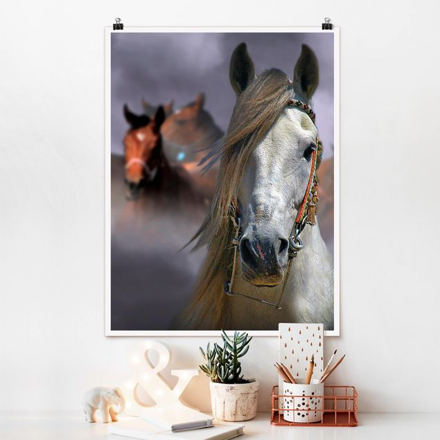 Poster - Horses in the Dust - Hochformat 3:4