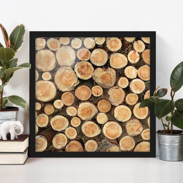 Bild mit Rahmen - No.YK18 Baumstämme - Quadrat 1:1