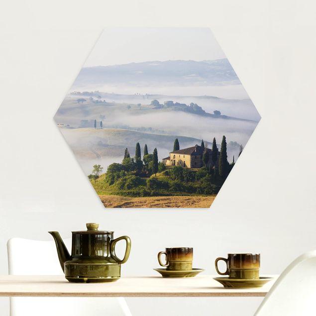 Hexagon Bild Alu-Dibond - Landgut in der Toskana