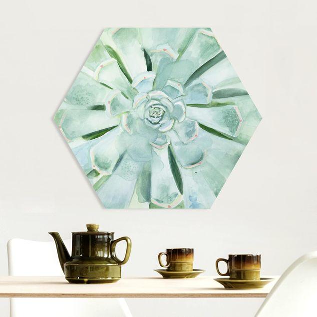 Hexagon Bild Forex - Sukkulente Aquarell Hell