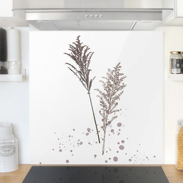 Glas Spritzschutz - Botanisches Aquarell - Schwingelschilf - Quadrat - 1:1