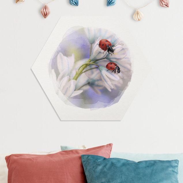 Hexagon Bild Forex - Wasserfarben - Marienkäfer Paar