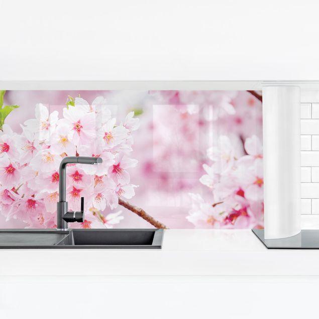 Küchenrückwand - Japanische Kirschblüten