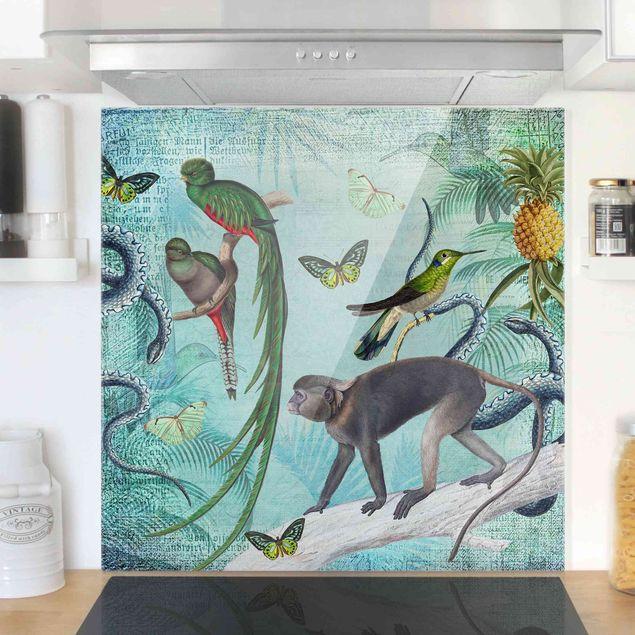 Glas Spritzschutz - Colonial Style Collage - Äffchen und Paradiesvögel - Quadrat - 1:1