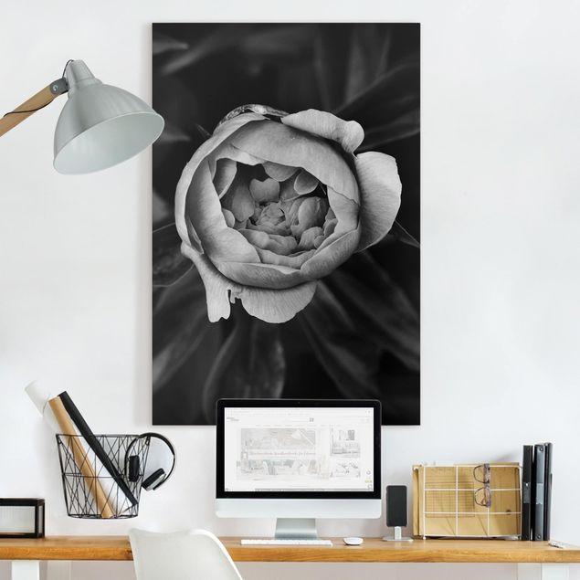 Leinwandbild - Pfingstrosenblüte vor Blättern Schwarz Weiß - Hochformat 3:2