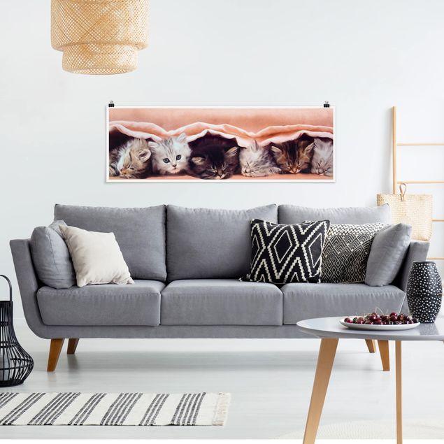 Poster - Sweet Like Sugar - Panorama Querformat